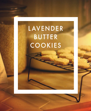 lavender-butter-cookies