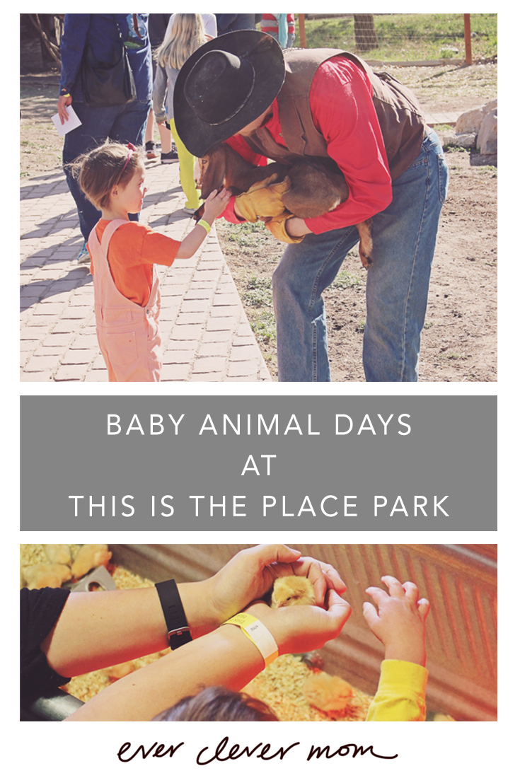Baby Animal Days at This is the Place Park