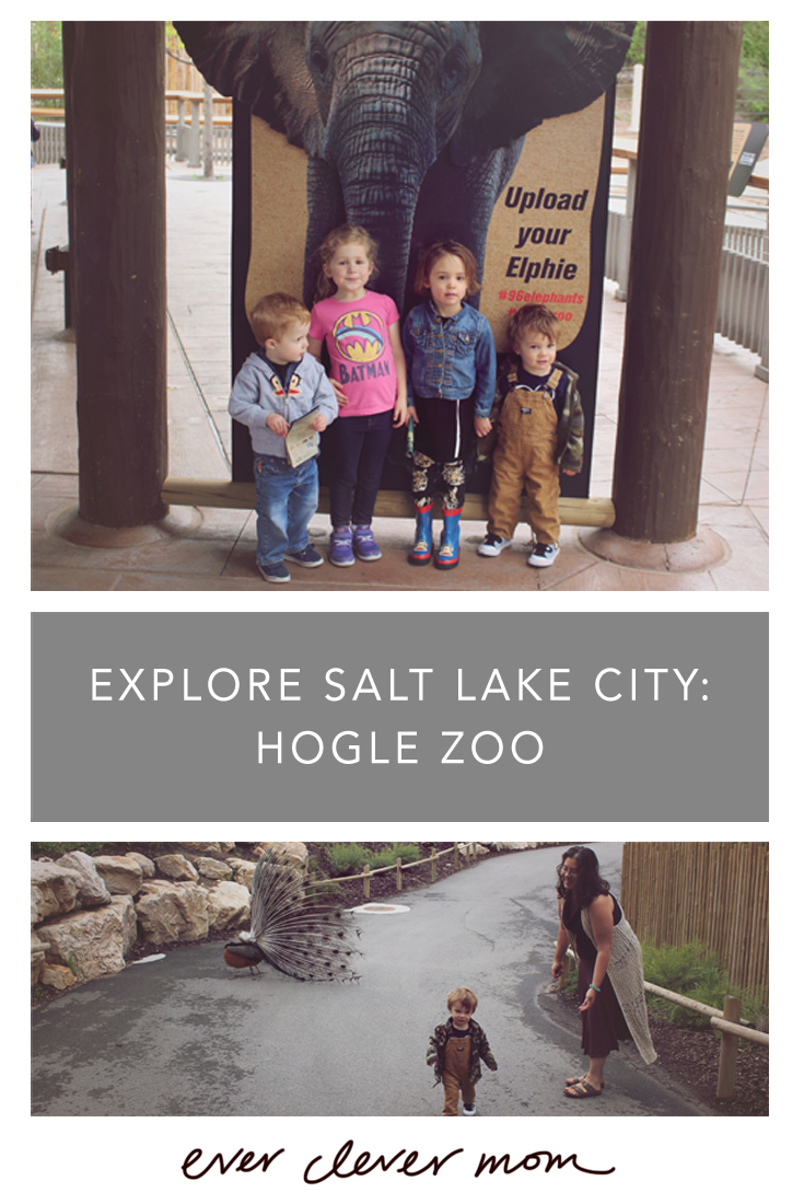 Explore Salt Lake City Hogle Zoo
