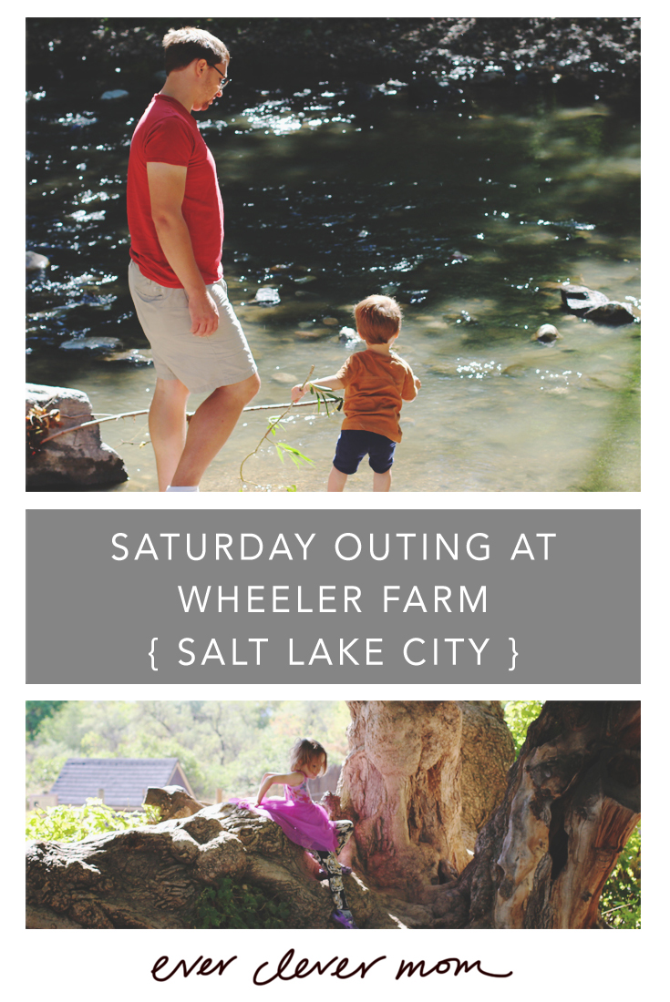 Saturday Outing at Wheeler Farm in Salt Lake City Utah