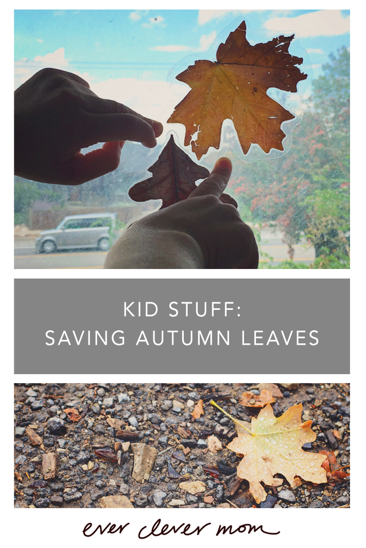 Kid Stuff- Saving Autumn Leaves