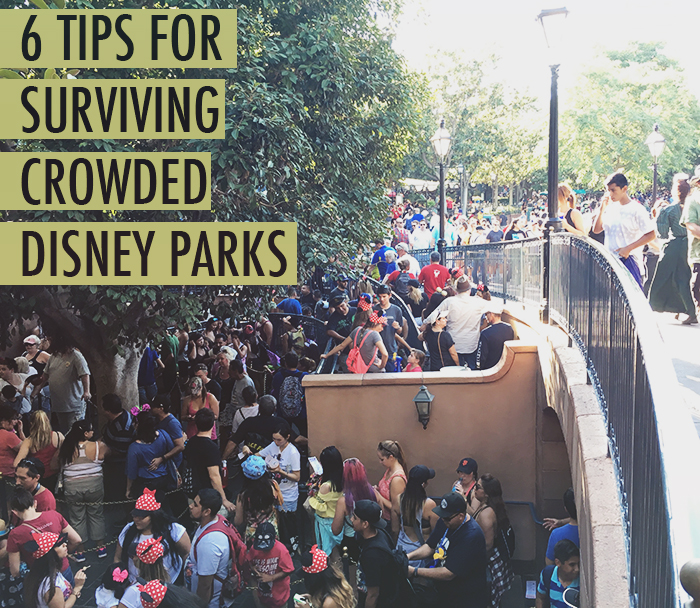 6 tips for surviving crowded Disney parks