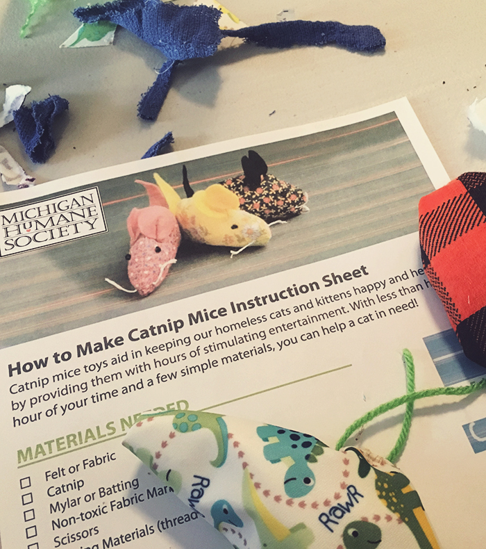 Make animal toys for the animal shelter